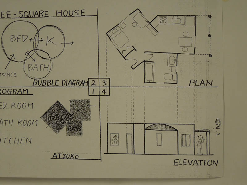 Architectural conventions. House programming plan view and elevation